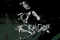 The Joy Formidable 8-13-16